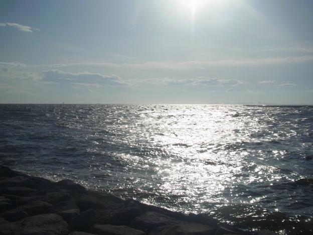 稲毛海岸 海その641 RIMG7124