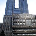 Photos: 都庁