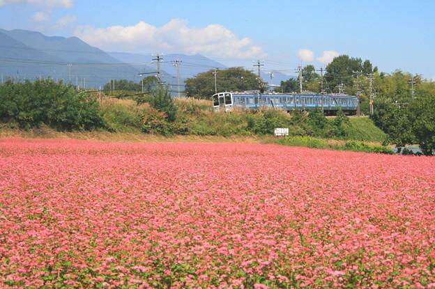 赤そばと飯田線列車1