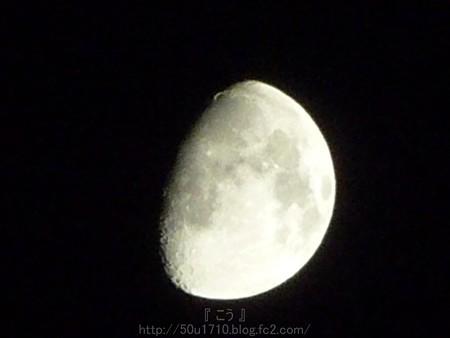 140806-お月さん (8)