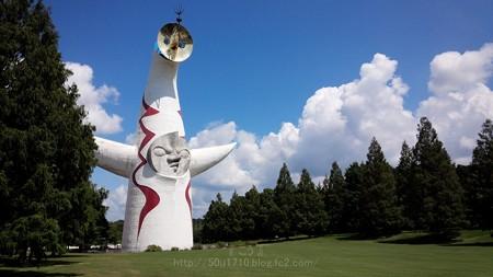140830-万博記念公園 (11.5)