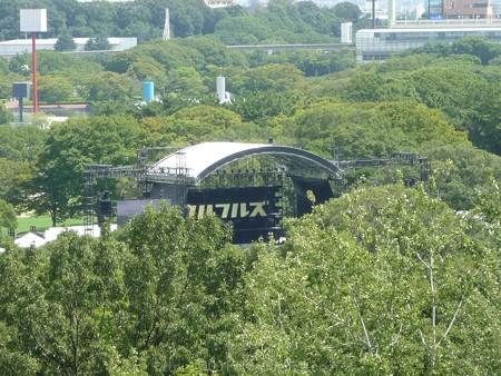 140830-万博記念公園 (16)