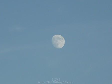 141006-お月さん (5)
