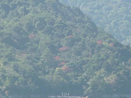 151018-宮島 (14)