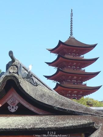 151018-宮島 (85)