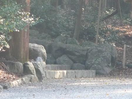 151021-伊勢神宮 内宮 (36)