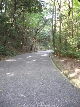151021-倭姫宮 (5)