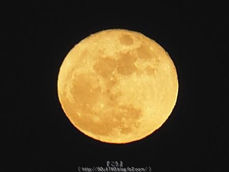 151226-お月さん (7)