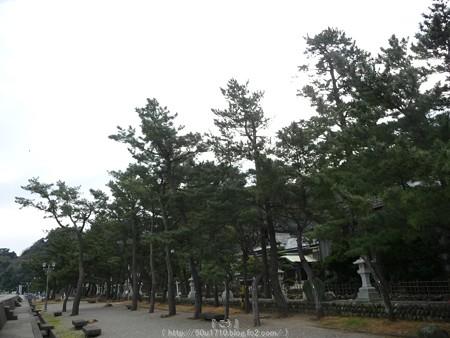 160108-二見興玉神社 (2)