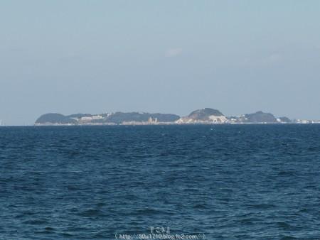 160110-伊良湖岬 (8)