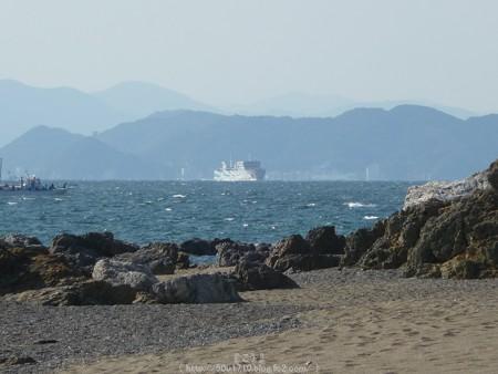 160110-伊良湖岬 (39)