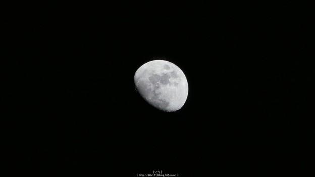 Photos: 160218-お月さん (2)