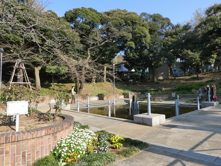 160321-元町公園 (26)