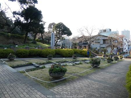 160321-元町公園 (33)