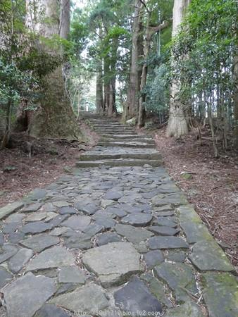 160324-熊野古道 大門坂 (49)