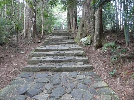 160324-熊野古道 大門坂 (51)