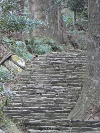160324-熊野古道 大門坂 (59)