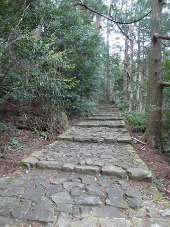 160324-熊野古道 大門坂 (76)