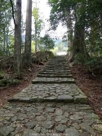 160324-熊野古道 大門坂 (85)