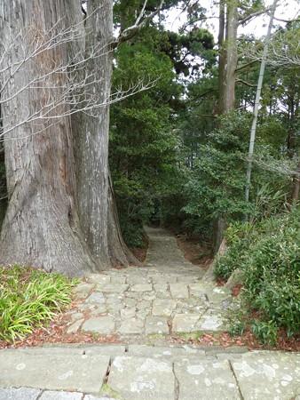 160324-熊野古道 大門坂 (87)