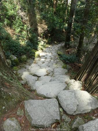 160324-熊野那智大社 熊野古道 (10)