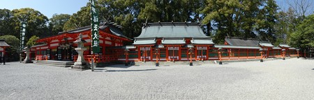 160324-熊野速玉大社 (10)