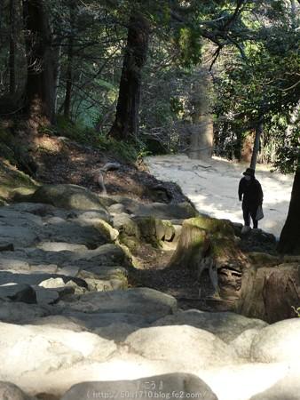 160324-神倉神社 (43)