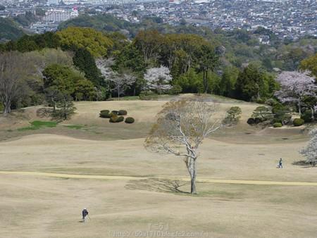 160406-日本平ホテル (119)