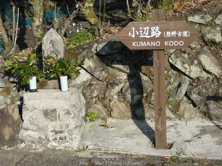 160325-熊野古道 小辺路 (2)