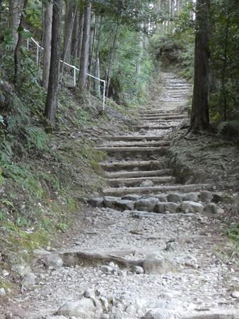 160325-熊野古道 小辺路 (13)