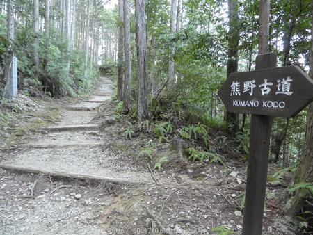 160325-熊野古道 小辺路 (14)