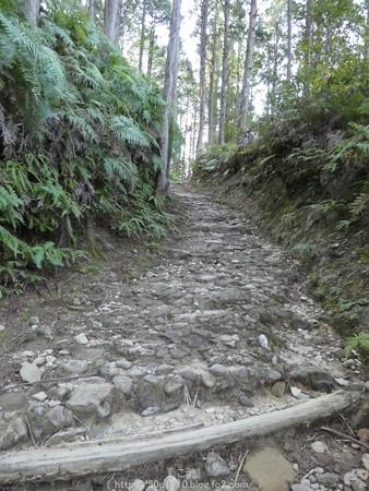 160325-熊野古道 小辺路 (16)