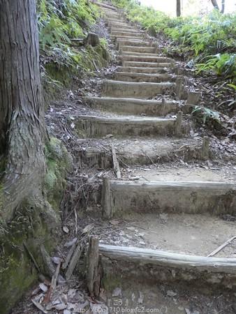 160325-熊野古道 小辺路 (34)