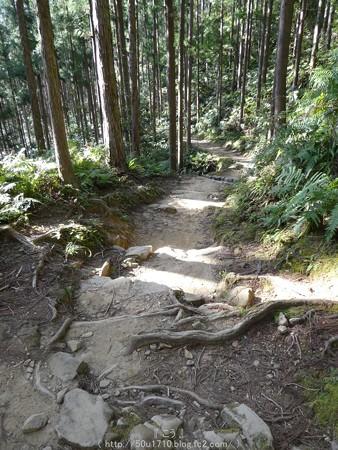 160325-熊野古道 小辺路 (51)