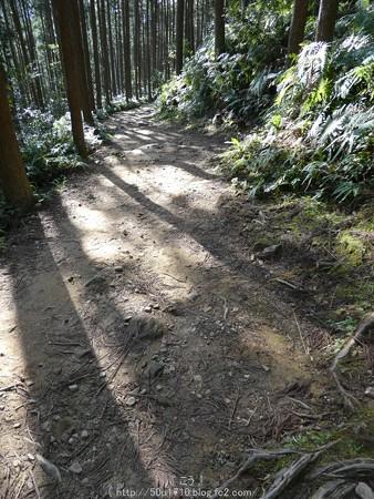 160325-熊野古道 小辺路 (52)