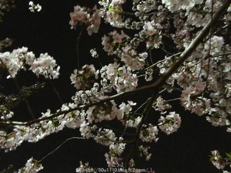 160410-THE ALFEE 京都2日目 (23)