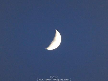 160512-お月さん (4)