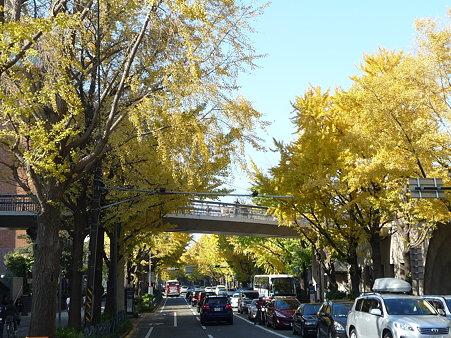 091123-山下公園通 (4)