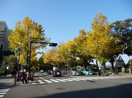 091123-山下公園通 (43)