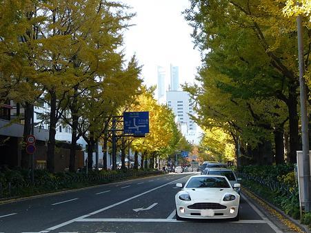 091123-山下公園通 (53)
