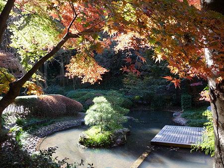 091204-明月院庭園 (75)