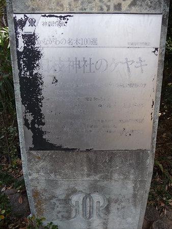 100120-日枝社 (4)