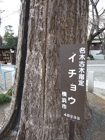 100120-7.宗川寺 (5)