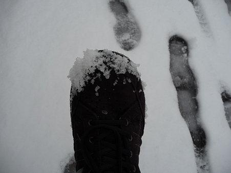 100202-雪(朝) (22)