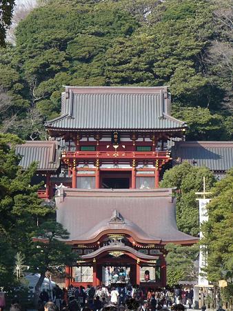 100319-八幡さま (1)