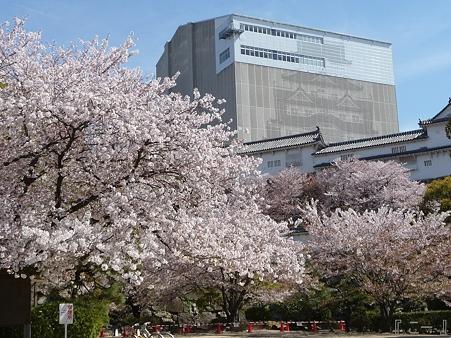 110417-姫路城 (23)