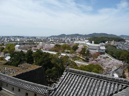 110417-姫路城 (172)