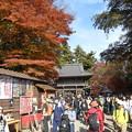 Photos: 高尾山薬王院も人人人2015.11.21
