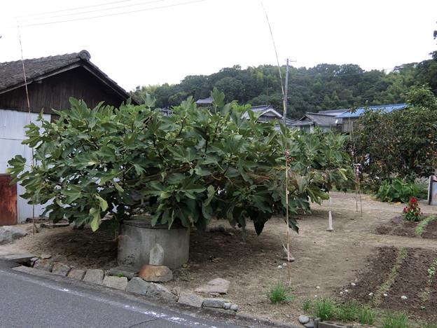 福岡〜東京 ツーリング 20150921 (12)