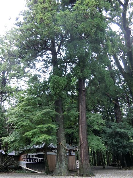 福岡〜東京 ツーリング 20150925 (16)